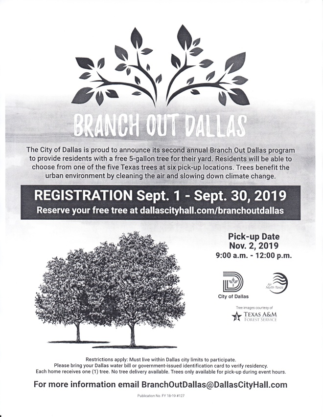 Branch Out Dallas - Registration